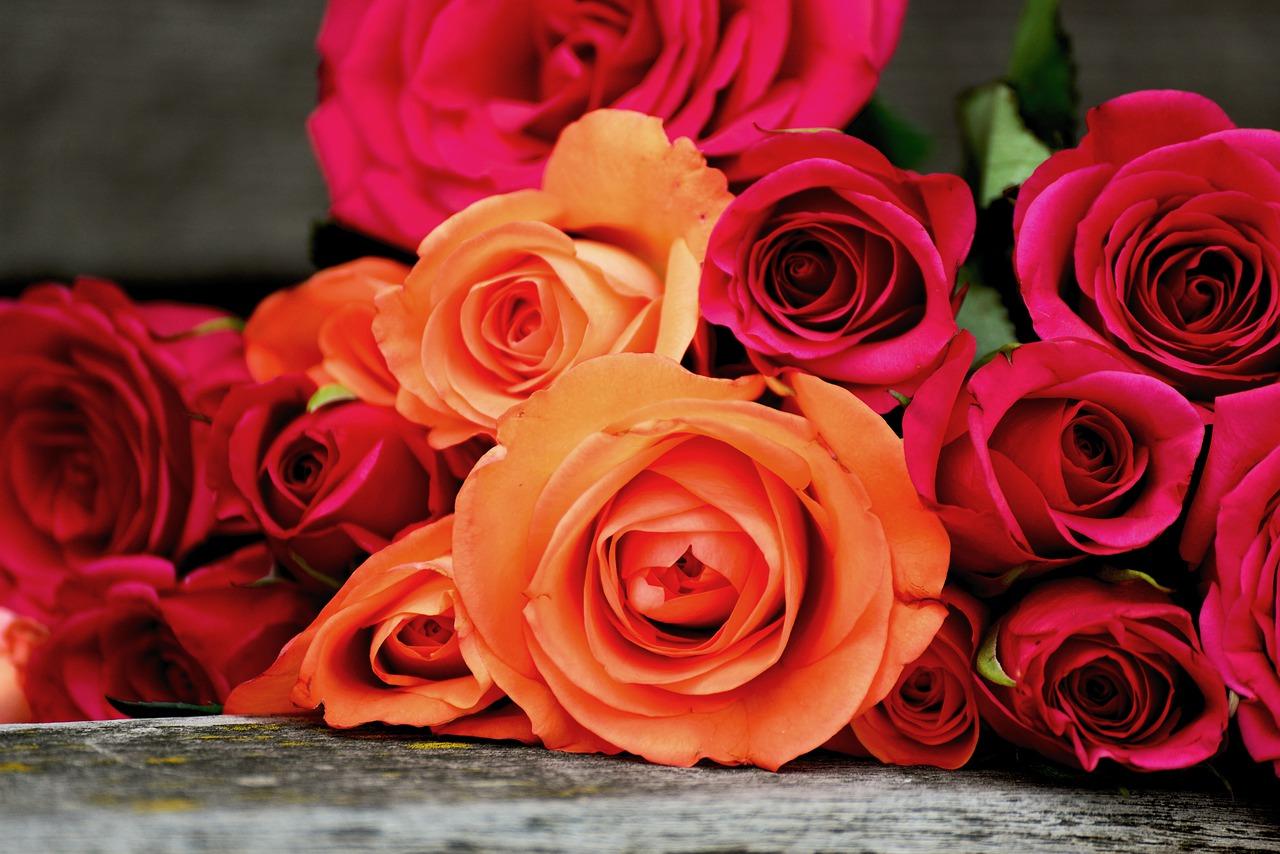 Tipos de colores de rosas